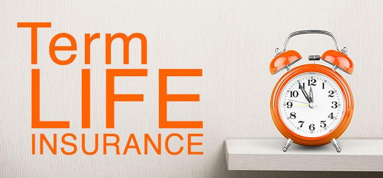 Term insurance plans