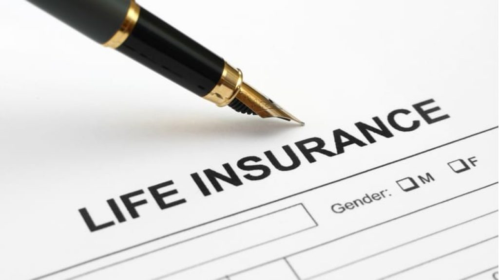 learn what is life insurance