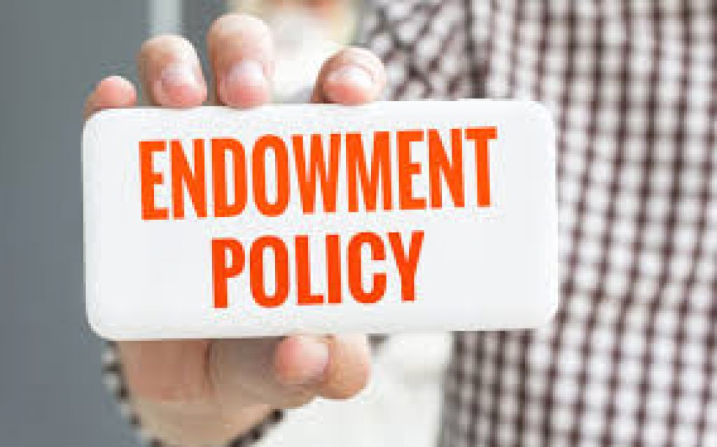 learn what is endowment policy